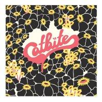 Catbite-Catbite