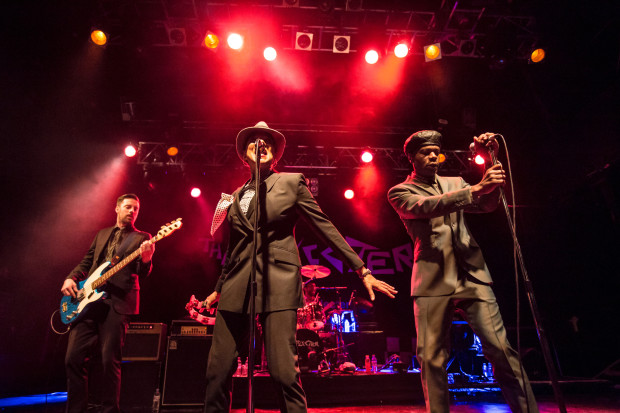 The Selecter – Box Fresh! - The Interview - REGGAE STEADY SKA